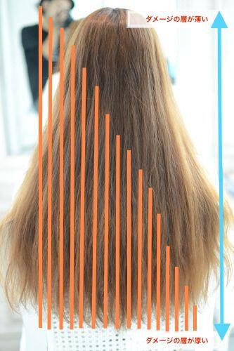 センチ 髪 1 ヶ月 何 髪は一年でどれ髪は一年でどれくらい伸びるの?最大限に伸びる方法って?くらい伸びるの?その実態とは